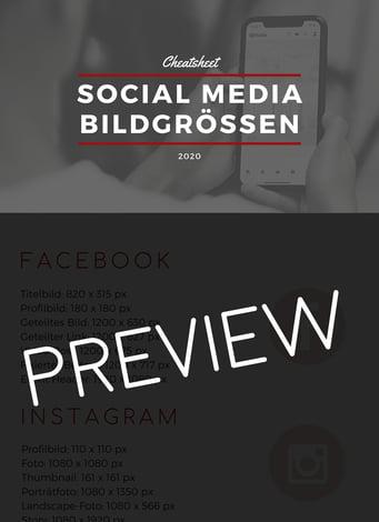 SocialMediaBildgrößen_Preview