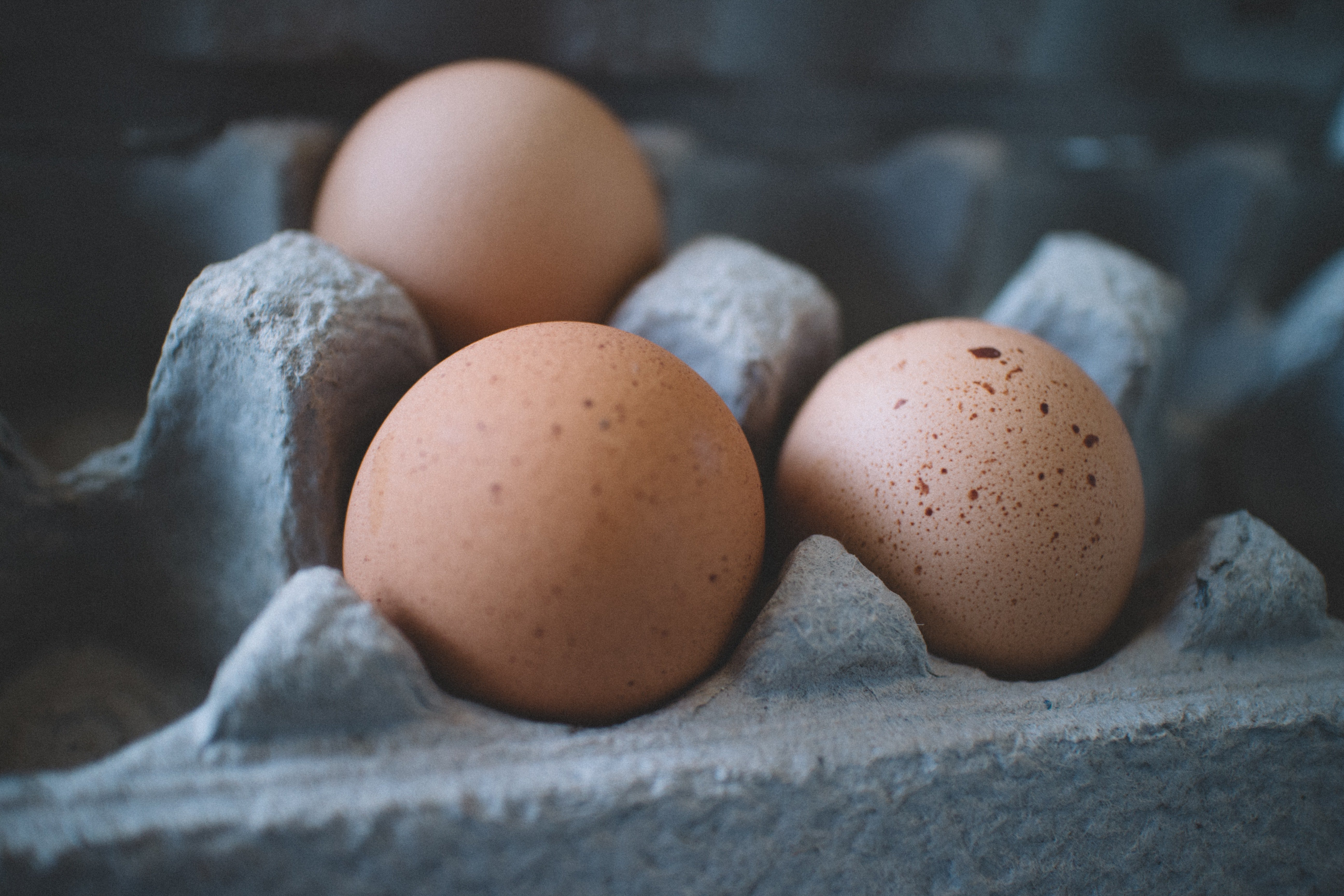 selective-focus-photo-of-three-eggs-on-tray-600615